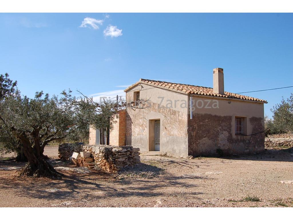 Nice rustic estate of 65.700 m2 with olive and carob trees. Besides, the estate boasts a well built cottage which is provided with power and water. This rustic estate is located in l'Ampolla, not far from the main town. Ask for price! Negotiable.