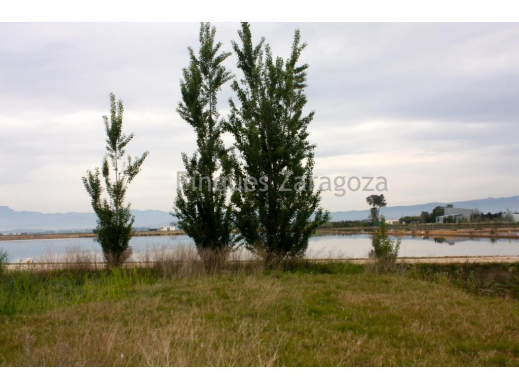 Rustic estate of 6.789 m2 boasting a rice field and a beautiful balsa. It also has a cement-based screed construction.Located near Sant Jaume d'Enveja, in the middle of the Ebre Delta.