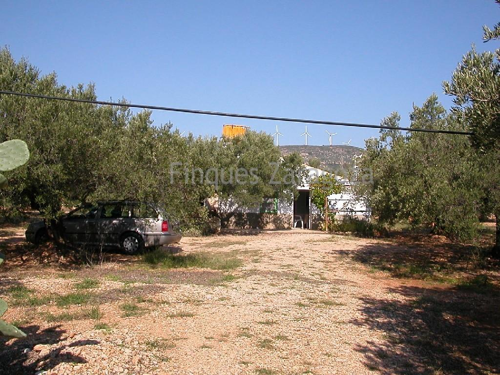 Amazing rustic estate of 15000 sq.m planted with olive, carob and almond trees. A real and relaxing Mediterranean holiday spot. The estate is provided with water from well and the house is in good condition. Moreover, it boasts panoramic views and a good location, only 7 km from the surrounding towns of Camarles, l'Aldea and a 15-minute drive from l'Ampolla and its beaches.