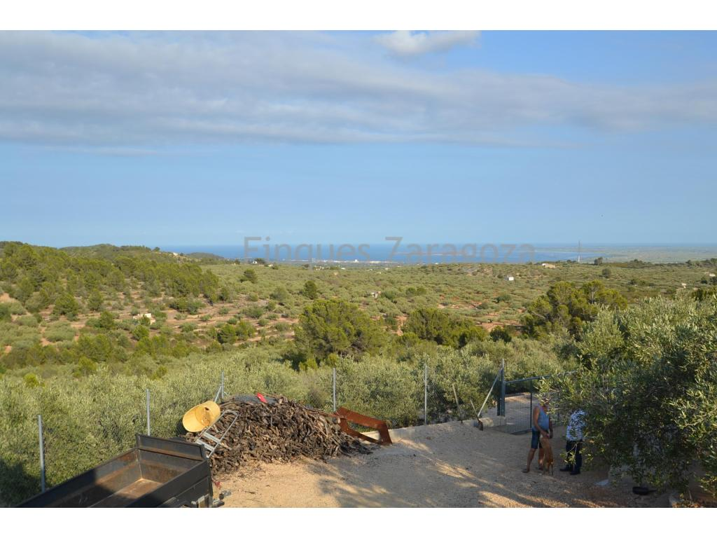 Rustic villa of 12.000 sq.m with olive and carob trees. Situated in the municipality of the historical main town of Tortosa, in Coll de l'Alba country area.This villa has unbeatable views over the sea and the Ebro Delta as well as a farm building in its premises.