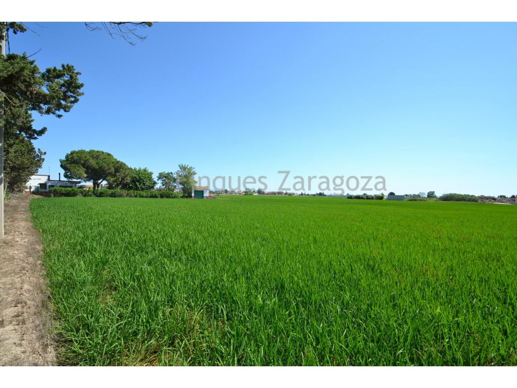 It is about 10 Jornales del pais rice field with country house and warehouse in the municipality of Sant Jaume d'Enveja.The house has water and mains electricity.
